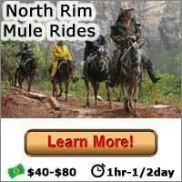 North Rim Mule Rides - Button