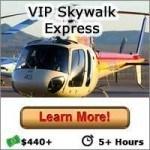 VIP Skywalk Express - Button